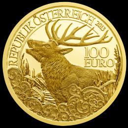 Èervený jelen 2013 - Wildtiere Österreich
